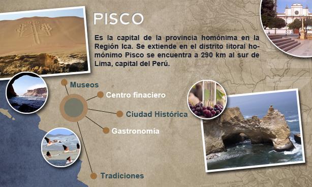 Perubus_pisco